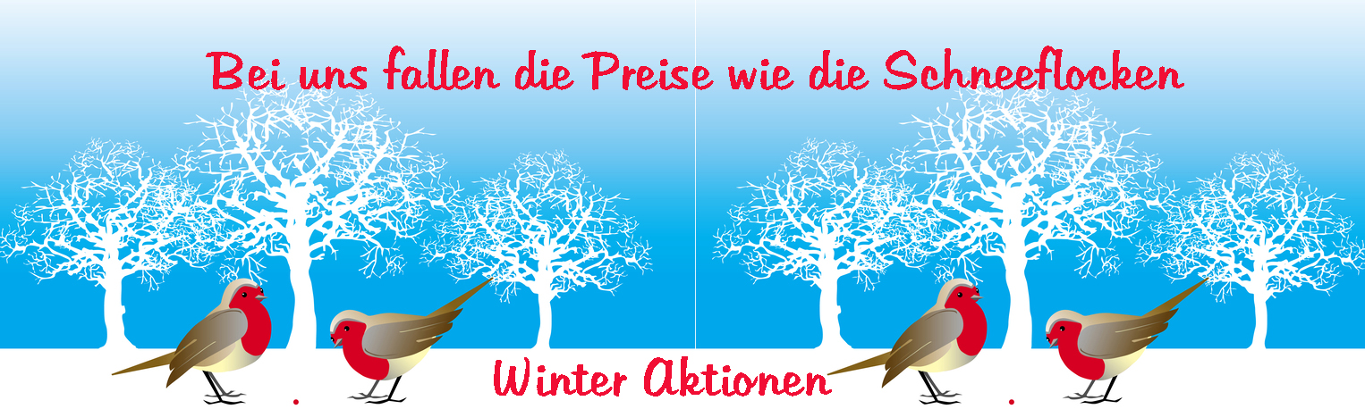 Aktion-Winter-Banner5dd87744d15da
